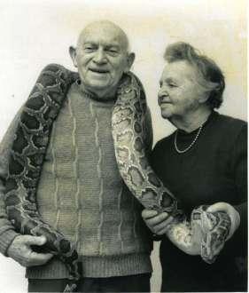 Aarón Shulov, pionero e ideario de un zoológico en Jerusalén, junto a su esposa y una pitón.