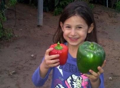 Los pimientos son básicos y esenciales en la dieta israelí, así que qué mayor alegría para esta niña del Aravá.